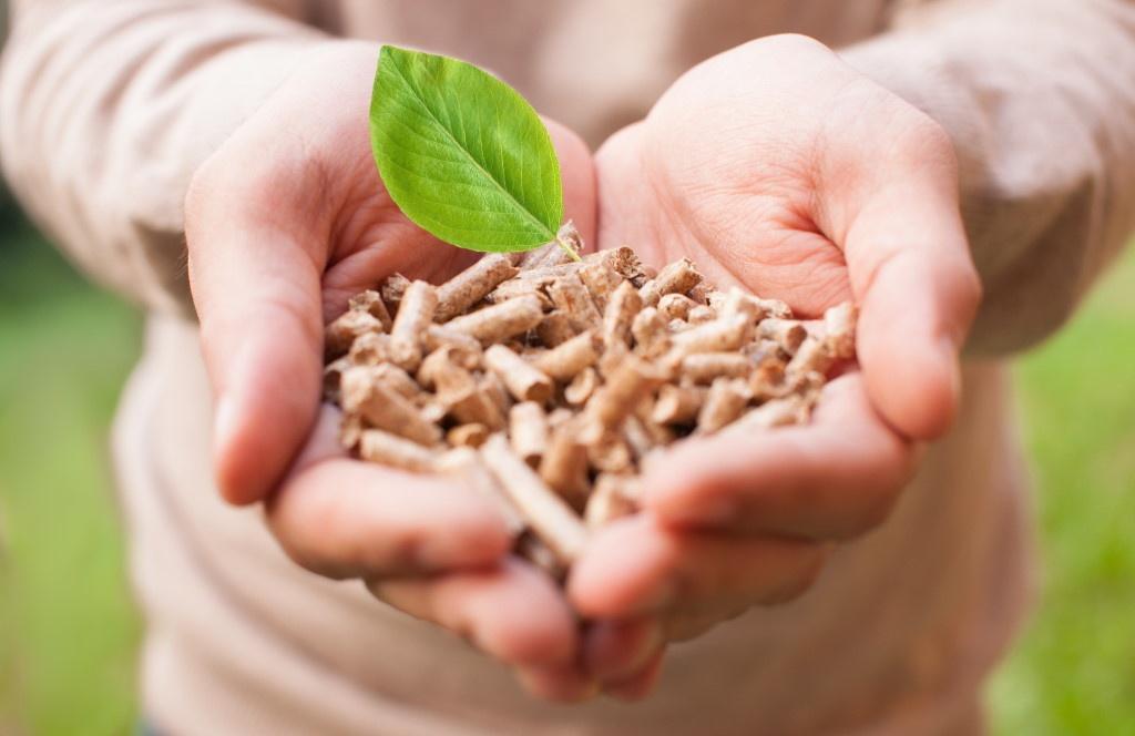 Voici ce que la biomasse vous apporte !
